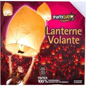 1 lanterne volante blanche_carrefour_traiteur