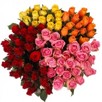 160 Roses coloris variés