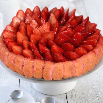 Charlotte aux fraises - 12 parts