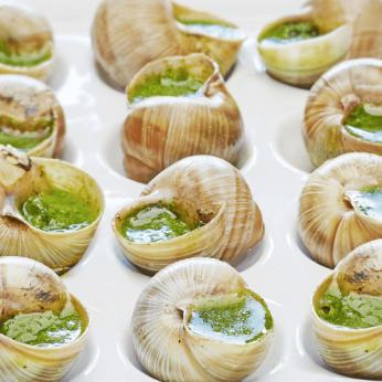 48 Escargots de Bourgogne à la bourguignonne
