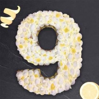 Number Cake - Chocolat blanc / Citron - Numéro 9 - 8 parts