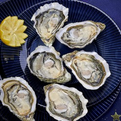 2 douzaines d'huîtres - Spéciales Victorines n°3