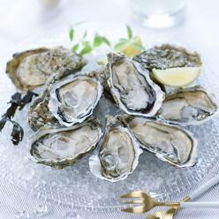 2 douzaines d'huîtres - Pousses en claires n°3 - Marennes Oléron - Label Rouge