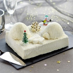 Entremet Igloo des pingouins - 8/10 parts