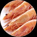 Crevettes roses cuites de Madagascar 40/60