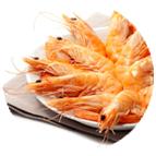 Crevettes sauvages 10/20