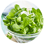 Salades Vertes